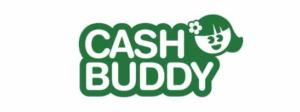 Cashbuddy årslån